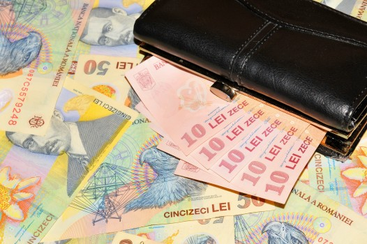 bani_money_leu